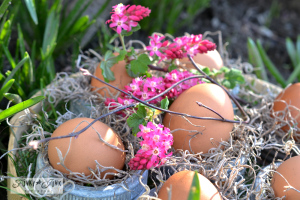 Easter decorating… Funky Junk Interiors