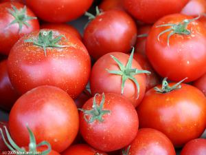 Tomato's In Your Home Garden  – 'Again!'