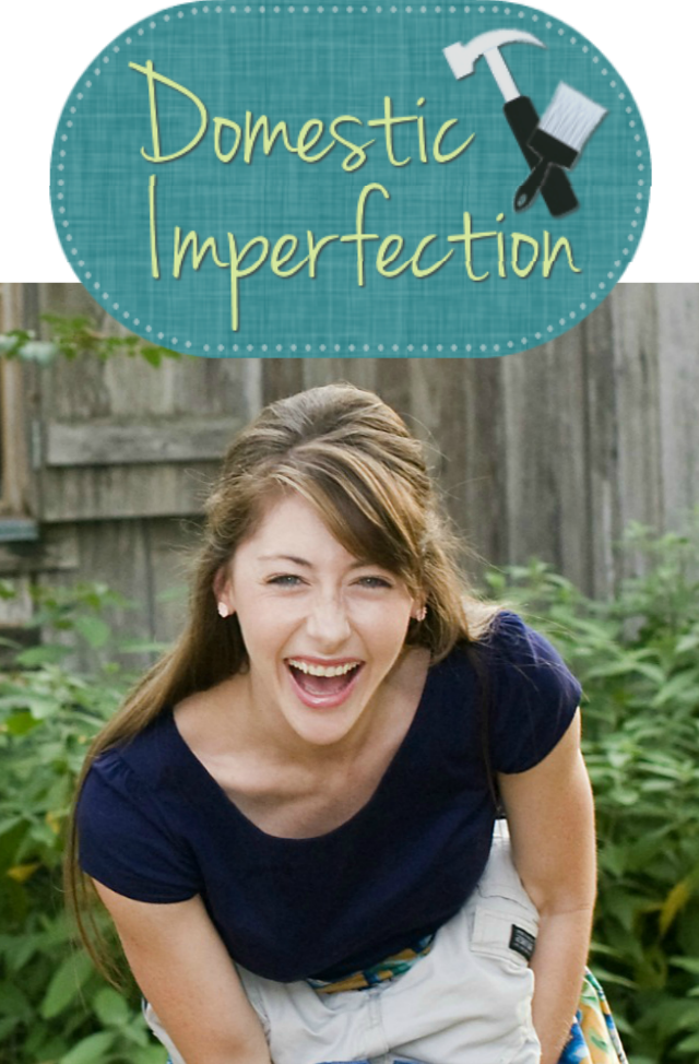 Domestic Imperfection Logo and Ashley