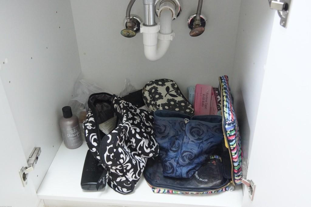 organizing-under-sinks